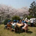 満開の桜の下、お花見と誕生会を行いました